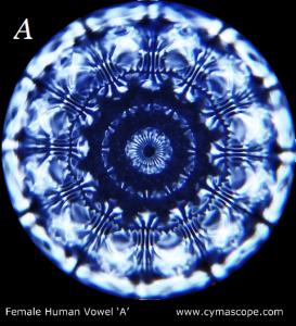vocale cymascope