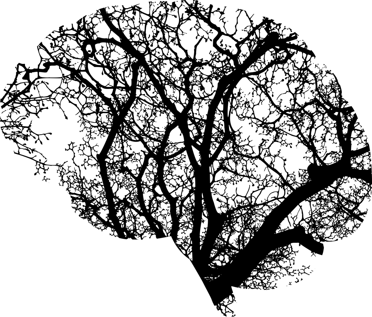 cervello e risonanza di schumann